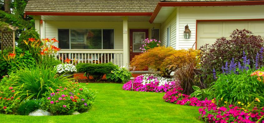 amenajare gradini terase
